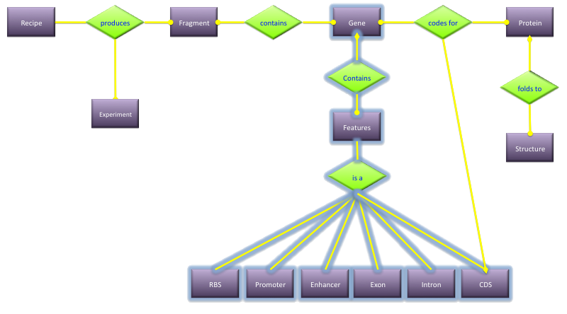Introduction to data modeling er diagrams extended example 1 ccuart Gallery